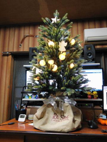 ブルージュのクリスマスツリーの様子