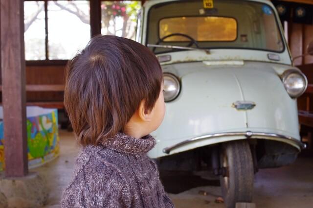 車を見つめる3歳児